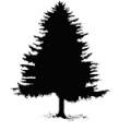 tree_icons_pine